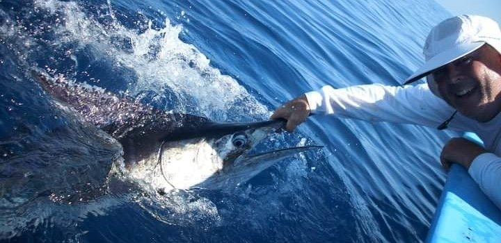 Marlin Catch & Release